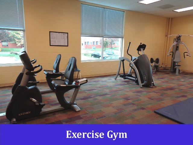 Exercise Gym